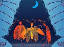 Поляната и нектарните шарки, от Лена Крун (първо писмо)
