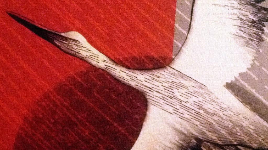 Фрагмент от корицата на Опитомяване на камъка, стихосбирка от Анна Христова