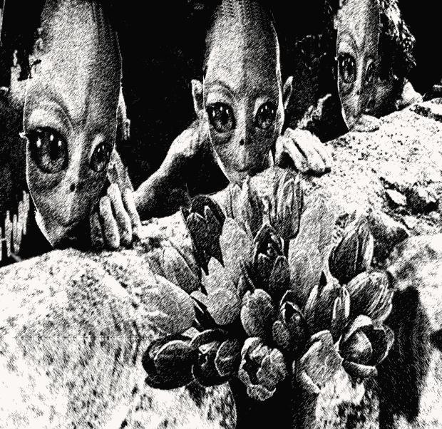 Илюстрация: Марсианци опознават Земята, от Калин Николов