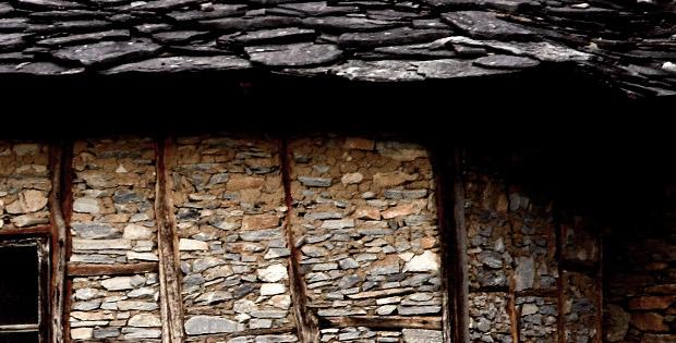 Камък от гробище, от Светла Дамяновска (разказ)